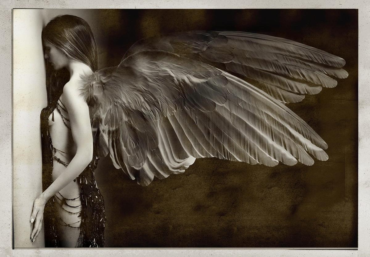 angeli-caduti_2015_01