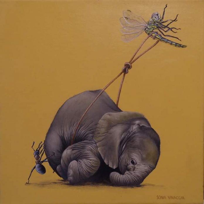 Sonia Vinaccia, istantanee dipinte di un sogno