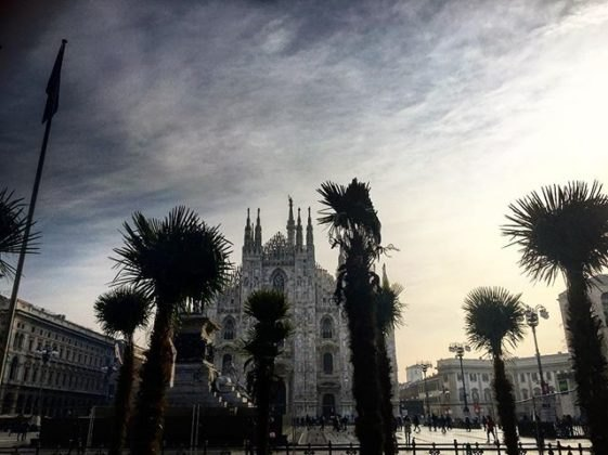palme-piazza-duomo.scale-to-max-width.825x