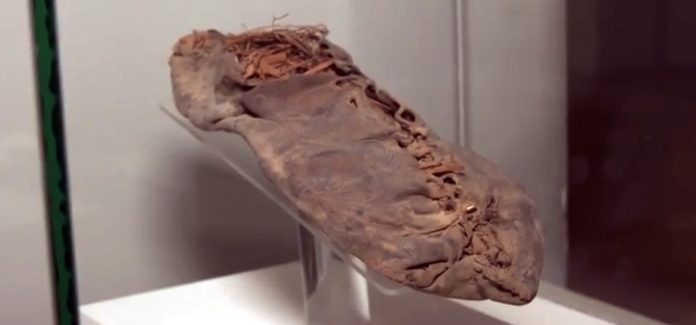 Quando 5000 anni fa Oetzi indossava la pelle